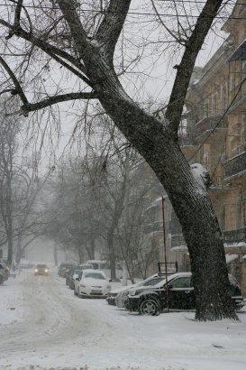 В Одессе - снежное светопреставление