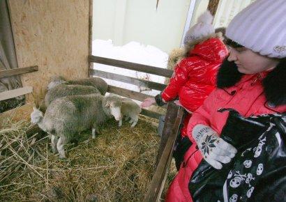 Одесса: от Нового года до Рождества