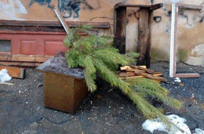 Одесситы избавляются от елок. Заодно и от всего лишнего (фото)