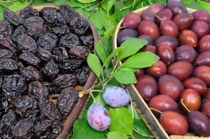 Полезные свойства чернослива и пять полезных причин его употребления