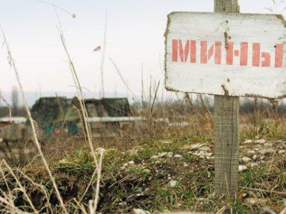 На границе с Приднестровьем обнаружен и обезврежен тайник с минами