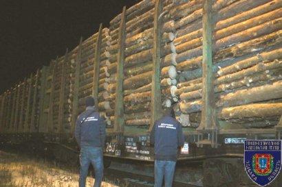 В Одессе нашли лесную контрабанду (фото)