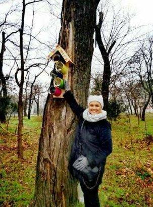 Одесситов приглашают на акцию «Давай покормим птиц»
