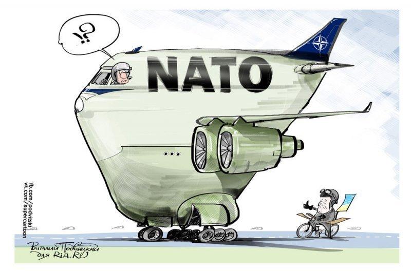 ВНАТО сообщили, что нужно сделать Украине для вступления в союз