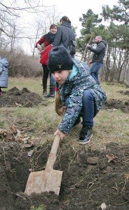 В парке Победы одесситы высадили 500 саженцев