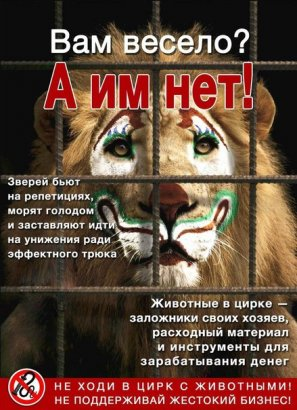 Нет эксплуатации животных в цирке!