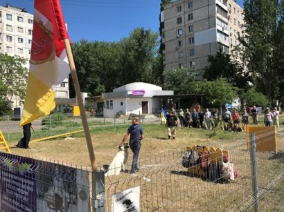 Открылась новая площадка для выгула и дрессировки животных на Крымском бульваре