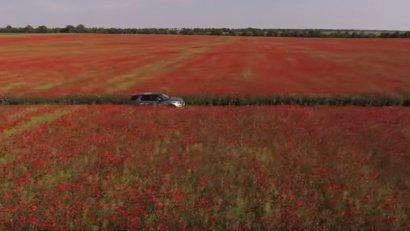 Бессарабия. Видео о красотах Одесского региона