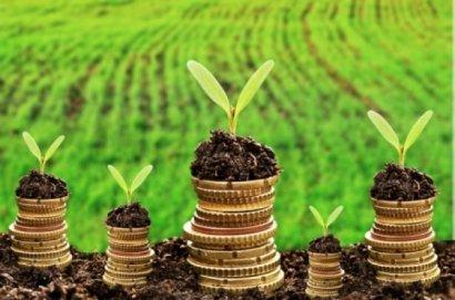 В нынешнем году плата за землю пополнила местные бюджеты области более, чем на 1,5 миллиарда гривен