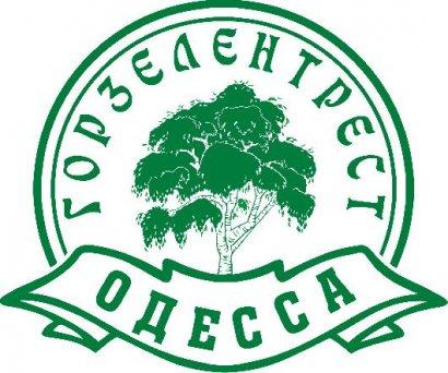 «Горзелентрест» продолжает благоустройство зеленых зон города