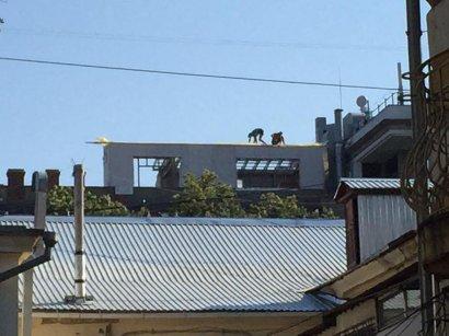 На крыше памятника архитектуры ведутся незаконные  строительные работы
