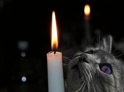 15 августа в Одессе в ряде домов будет отключена электроэнергия