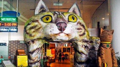Малайзийский город, помешанный на котиках (ФОТО)