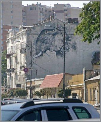 «… и другие звери» на Тираспольской (ФОТО)