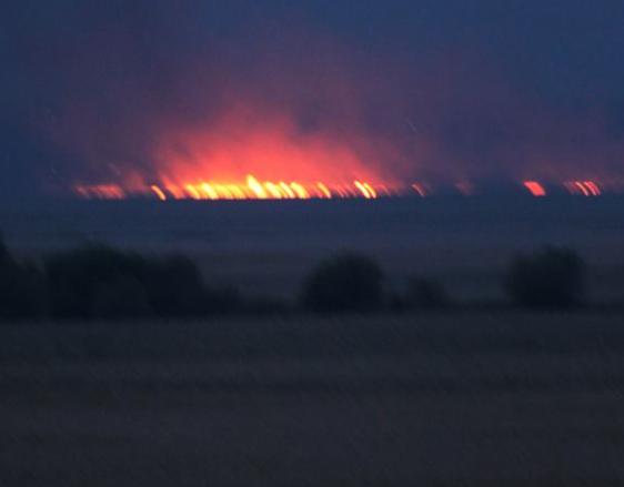 ВНижнеднестровском общегосударственном парке произошел пожар