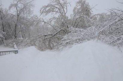 Из-за погодных условий в Одесской области без электроэнергии остались двадцать четыре населенных пункта