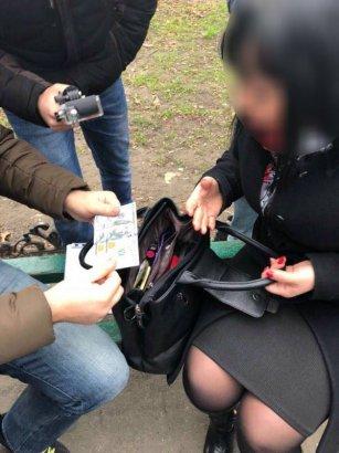 В Одессе за взятку задержана сотрудница ЖКС