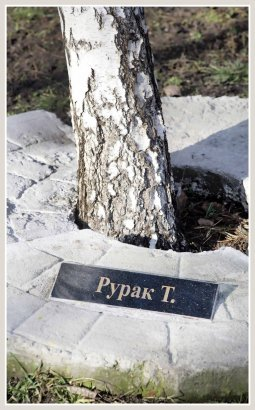 Памяти сотни тысяч погибших одесситов: в городе почтили жертв Холокоста