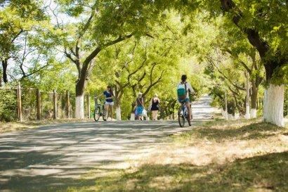 Трасса здоровья должна вновь стать исключительно вело-пешеходной