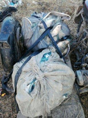 Пограничники Одесской области задержали четырёх браконьеров с уловом на 50 тысяч гривен