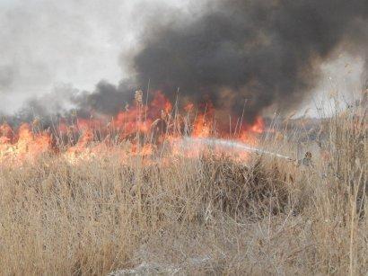Одесские спасатели просят граждан соблюдать предельную осторожность в связи с высокой вероятностью возникновения пожаров