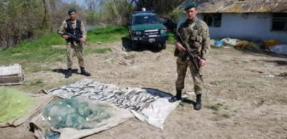 На Дунае задержали браконьеров