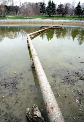 Что отыскалось в большом пруду?