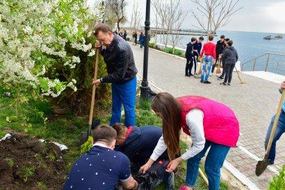 Студенты Одесской Юракадемии и МГУ провели масштабные субботники
