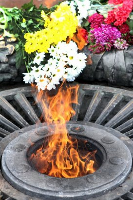 Возложение цветов и венков к памятнику Неизвестному матросу  на Аллее Славы в День Победы