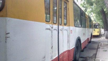На Адмиральском проспекте остановлено движение троллейбусов из-за упавшего дерева