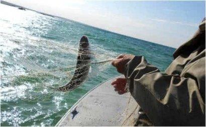 Пограничники РФ задержали маломерное судно с двумя украинскими рыбаками, которые незаконно ловили осетров в Азовском море