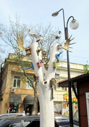 Знакомьтесь: одесская бабуля и… дерево с рогами