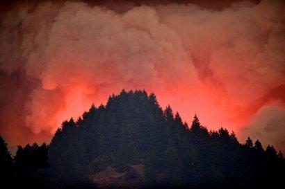 Мальчик из одесской семьи выплатит 36 миллионов долларов за устроенный им в США лесной пожар