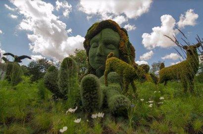В канун Троицы в парках Одессы проходит «зелёный» фестиваль