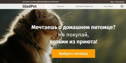 В Одессе более 500 бездомных кошек и собак нашли свой дом с помощью онлайн-сервиса