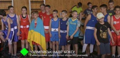 В Затоке прошёл международный турнир по боксу «Олимпийские надежды»