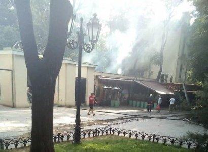Масштабный пожар произошел сегодня в Городском саду