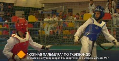 В спорткомплексе МГУ прошел масштабный международный турнир по тхэквондо