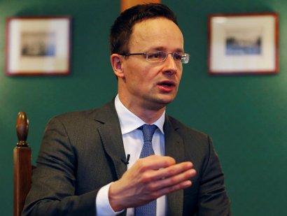 МИД Венгрии обвиняет Совет Европы в бездействии по вопросу нарушения прав закарпатских венгров в Украине