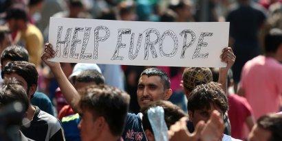 Арабы – в Германию, а украинцы – в Польшу!