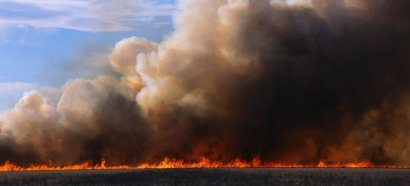 Трассу «Одесса-Рени» затянуло дымом
