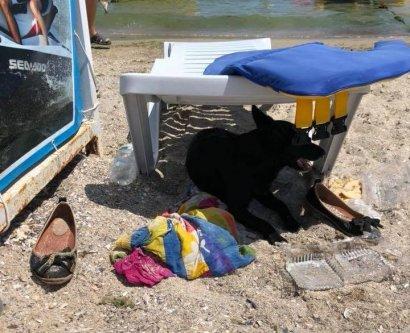 Женщина, которая вчера исчезла на пляже «Отрада», нашлась