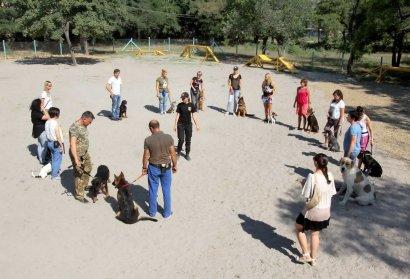 В Одессе отрыта новая специализированная площадка для выгула собак