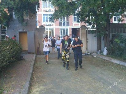 Общественники снесли ворота и прорвались на вырубку деревьев в Аркадии