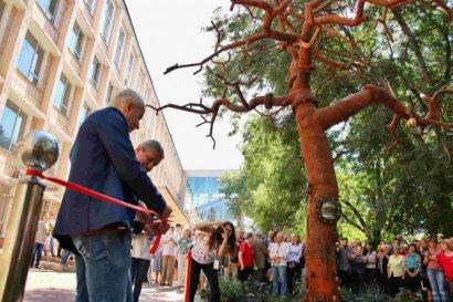 В Одессе появился новый арт-объект «Древо познаний»