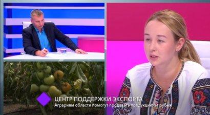 Центр поддержки экспорта. В студии – советник губернатора Одесской области Дарья Антоненко