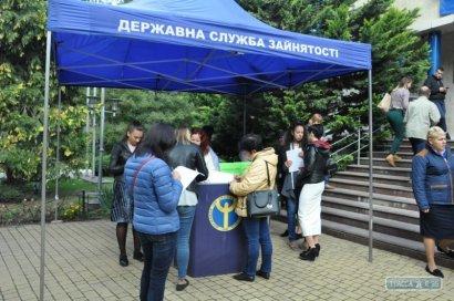 В Одессе более 10% актуальных вакансий приходятся на портовую отрасль