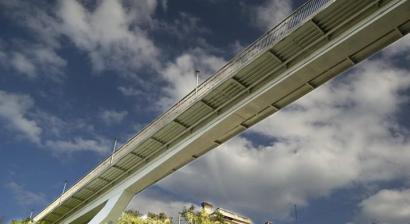 Мужчина совершил самоубийство прыгнув с Тещиного моста