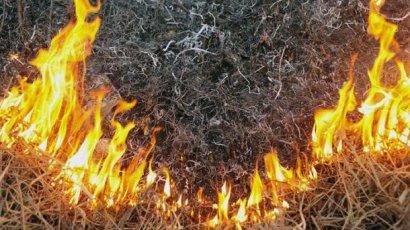 Спасательное ведомство предупреждает о высокой пожарной опасности на территории Одесской области