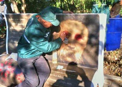 В парке Шевченко вандалы уродуют скамейки-книги